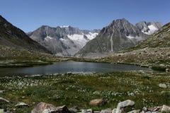 Mening naar bergen dichtbij Aletsch-gletsjer Stock Foto's