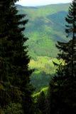 Mening over bergvallei stock afbeeldingen