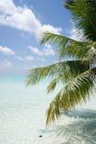 Mening over de Eilanden van de Maldiven van vliegtuig Stock Afbeelding