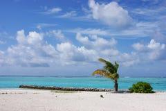 Mening over de Eilanden van de Maldiven van vliegtuig Stock Afbeeldingen