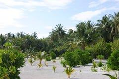 Mening over de Eilanden van de Maldiven van vliegtuig Stock Foto's