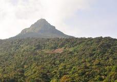 Mening over de groene heuvels royalty-vrije stock foto's