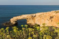 Mening over de Mediterrane kust stock afbeelding