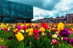 Mening over de mooie gebouwenvoorgevels op het centrale vierkant in de stad van Delft, Netherland royalty-vrije stock afbeeldingen