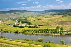 Mening over de vallei van Moezel in Duitsland Stock Foto