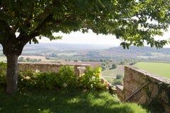 Mening over de Vezelay-heuvel met een vertakte boom royalty-vrije stock afbeelding