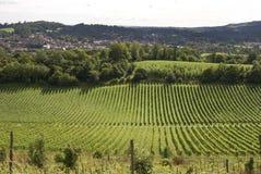 Mening over Dorking. Surrey. Engeland Royalty-vrije Stock Fotografie