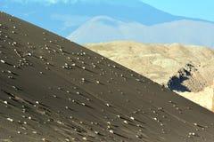 Mening over duin in Atacama-woestijn in Chili royalty-vrije stock afbeelding