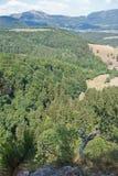 Mening over een gemengd bos Royalty-vrije Stock Fotografie