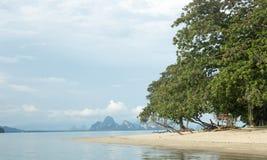 Mening over een stil en unpopulated strand in Phuket - Thailand royalty-vrije stock fotografie