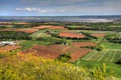 Mening over een vallei met landbouwers` s gewassen stock afbeelding