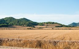 Mening over gecultiveerde gebieden en groene heuvels Stock Afbeeldingen