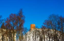 Mening over Gediminas-toren op de kasteelheuvel in de oude stad van Vilnius-stad in Litouwen Stock Foto's