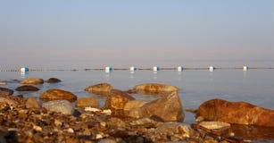 Mening over het dode overzees -- van de kustlijn van Jordanië Stock Afbeelding