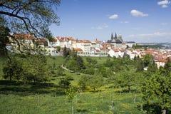 Mening over het kasteel van Praag Stock Afbeeldingen