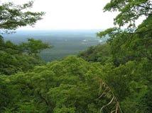 Mening over het Nationale Park van Semliki, Oeganda royalty-vrije stock fotografie