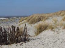 Mening over het strand aan de waterlijn Stock Fotografie