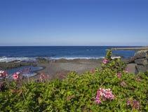 Mening over het strand van Playa Jardin in Puerto de la Cruz, Tenerife met B royalty-vrije stock foto