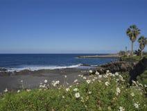 Mening over het strand van Playa Jardin in Puerto de la Cruz, Tenerife met B stock foto
