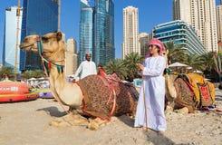 Mening over kamelen en mensen die op Jumeirha-strand in de stad van Doubai, Verenigde Arabische Emiraten ontspannen Royalty-vrije Stock Afbeelding