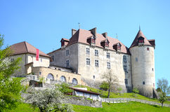 Mening over kasteel Gruyeres Royalty-vrije Stock Foto's