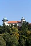 Mening over kasteel Nowy Wisnicz in Polen op een achtergrond van blauwe hemel Royalty-vrije Stock Foto's