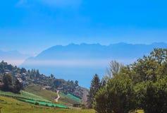 Mening over kustlijn Montreux van het meer van Genève, Zwitserland stock afbeeldingen