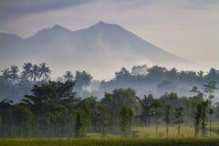 Mening over Rinjani-vulkaan in Lombok-eiland, Indonesië. Stock Afbeeldingen