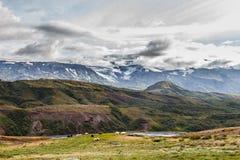 Mening over sheeps op vulkaan op achtergrond in IJsland Royalty-vrije Stock Foto's