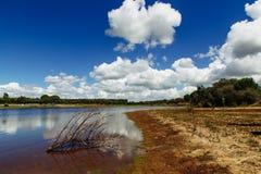 Mening over Sorraia-rivier Santarem, Setubal, Portugal Royalty-vrije Stock Foto