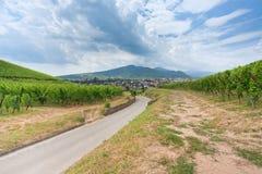 Mening over stad op Route des Vins d'Alsace, Frankrijk Stock Afbeelding