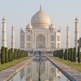 Mening over Taj Mahal van tuin Royalty-vrije Stock Fotografie