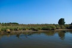 Mening van één van het kanaal van de Delta van Po rivier dichtbij het Adriatische overzees Stock Foto's