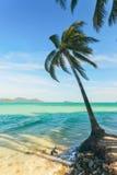 Mening van aardig tropisch strand met sommige rond palmen Koh Laoya Sea van Thailand Royalty-vrije Stock Afbeeldingen