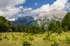 Mening van Albanese Alpen Stock Fotografie