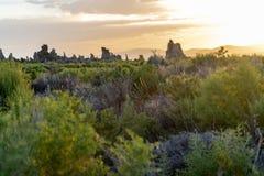 Mening van alsem en tufa torenvormingen tijdens zonsopgang bij Monomeer, royalty-vrije stock afbeeldingen