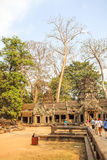 Mening van Angkor, Siem Riep, Kambodja Stock Afbeeldingen