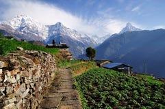 Mening van Annapurna-Berg met het lopen van weg bij de voorgrond. Royalty-vrije Stock Foto's