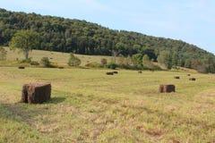 Mening van bergen over een gebied van in balen verpakt hooi royalty-vrije stock foto
