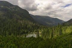 Mening van Bergen Slowakije van een sleep de Westelijke Tatra Stock Afbeeldingen