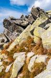 Mening van bergen van Solisko in Hoge Tatras, Slowakije Stock Fotografie