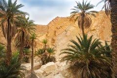 Mening van bergoase Chebika, de woestijn van de Sahara, Tunesië Stock Afbeelding