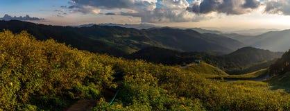 Mening van bergpieken, naald tropisch bospanorama Royalty-vrije Stock Afbeeldingen