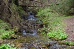 Mening van bergrivier in de vroege lente, in Slowakije Royalty-vrije Stock Fotografie