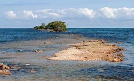 Mening van Biscayne-Baai, Florida Stock Afbeeldingen