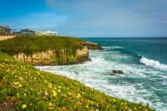 Mening van bluffs boven de Vreedzame Oceaan in Santa Cruz stock afbeelding