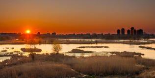 Mening van Boekarest van Vacaresti-delta op zonneschijn Royalty-vrije Stock Foto's