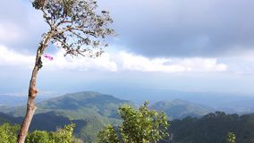 Mening van bomen op de berg tegen bewolkte hemel stock video