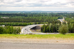 Mening van boreaal bos van Fairbanks Royalty-vrije Stock Foto's