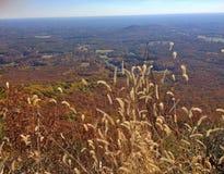 Mening van boven op ProefMountain op een glorierijke de herfstdag in Noord-Carolina Royalty-vrije Stock Foto